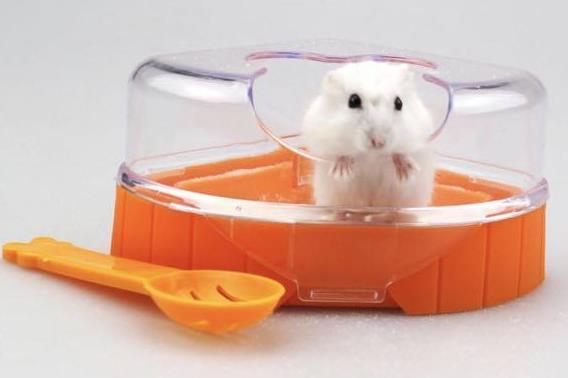 Hamster Tuvaleti